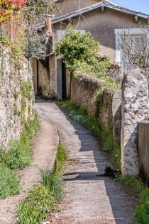 Chemin de la Cagouillère